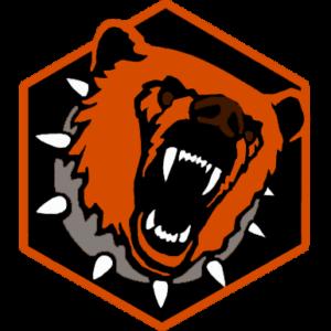 Медведь СБ видеонаблюдение и комплексные системы безопасности