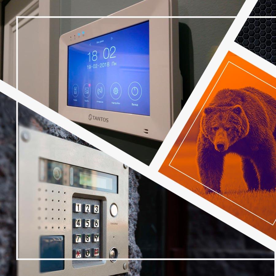 Медведь СБ: передовые системы безопасности, видеонаблюдения и контроля доступа