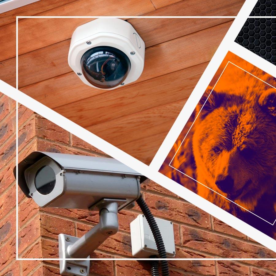 Медведь СБ: системы безопасности, видеонаблюдения и контроля доступа